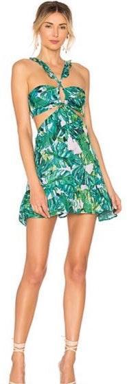 Lovers + Friends Olivia Mini Dress Palm Print