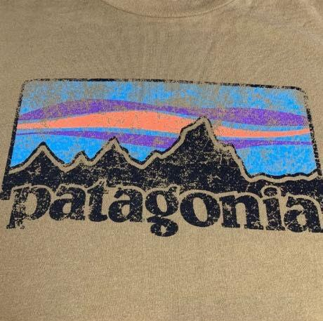 Patagonia Mountain Logo Brown Tee Size Medium