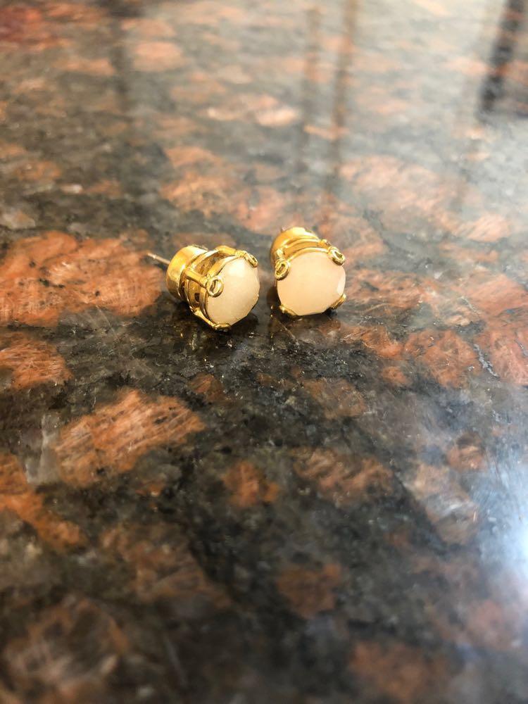Fossil Stone Stud Earrings