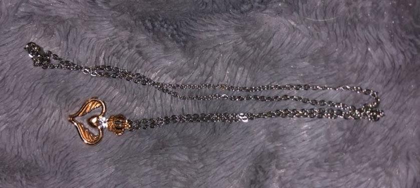 Amazon heart necklace